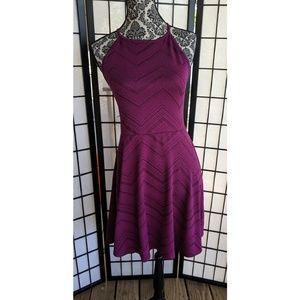 Mossimo Burgundy Skater Dress M